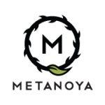 5866_metanoya2
